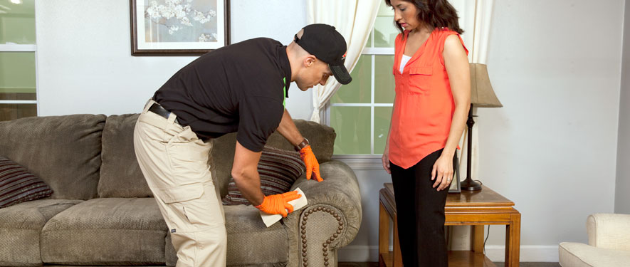 Southgate, MI carpet upholstery cleaning
