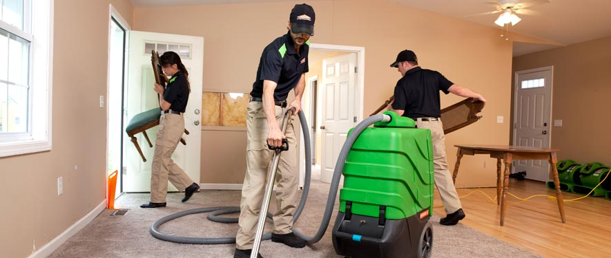 Southgate, MI cleaning services